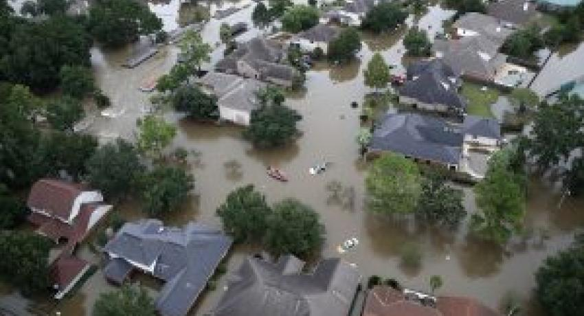Help Hurricane Harvey victims without getting scammed
